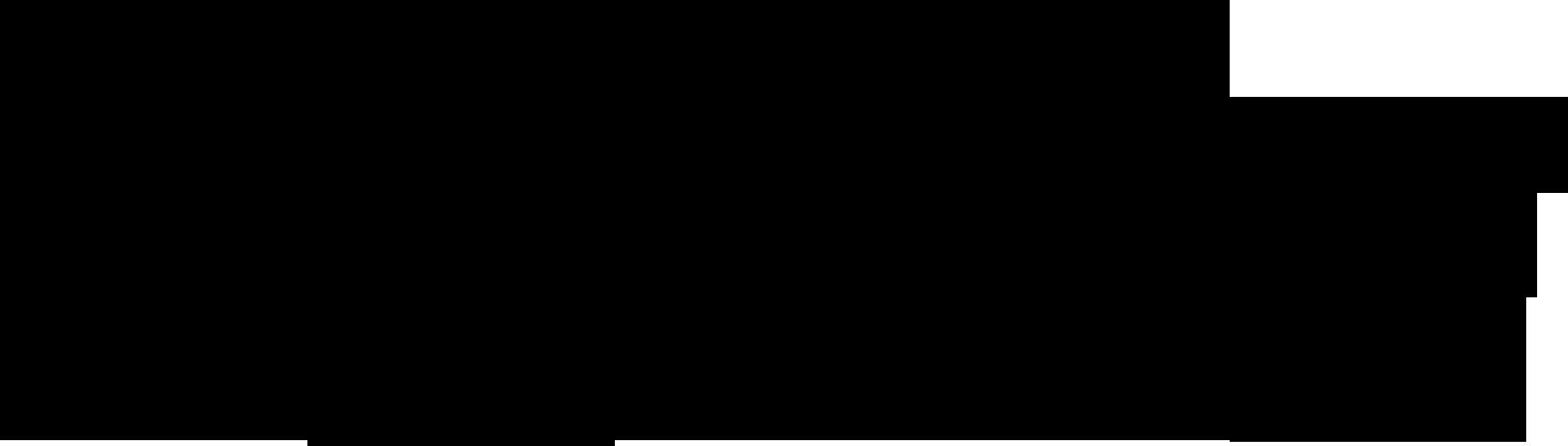 Logo ND Brno